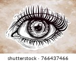 beautiful realistic eye of a... | Shutterstock .eps vector #766437466