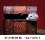 Stock photo cute kitten in wooden box postcard 766490416
