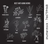 collection of anti aging herbs. ... | Shutterstock .eps vector #766759468