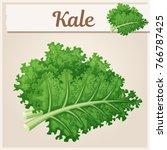 kale vegetable icon. cartoon... | Shutterstock .eps vector #766787425