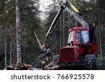 felling of trees in the north... | Shutterstock . vector #766925578
