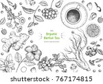 herbal tea shop frame vector... | Shutterstock .eps vector #767174815