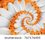 White Orange Flower Swirl...