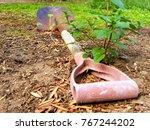 rusty shovel on mossy earth.  | Shutterstock . vector #767244202