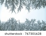 bush branches covered with snow ... | Shutterstock . vector #767301628