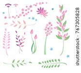 set of flowers and herbs for... | Shutterstock .eps vector #767305828
