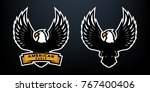 american eagle  two versions ...   Shutterstock .eps vector #767400406