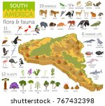 isometric 3d south america... | Shutterstock .eps vector #767432398