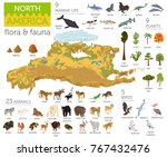 isometric 3d north america... | Shutterstock .eps vector #767432476