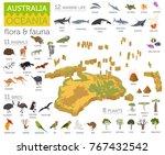 isometric 3d australia and... | Shutterstock .eps vector #767432542