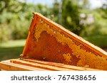 closeup portrait of beekeeper...   Shutterstock . vector #767438656