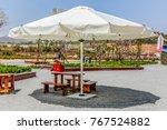 outdoor sunshade umbrellas and... | Shutterstock . vector #767524882