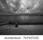 loneliness in lisbon. portugal. ...   Shutterstock . vector #767537152