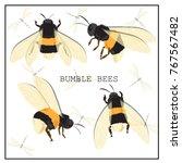 honey bee set. vector. set of... | Shutterstock .eps vector #767567482