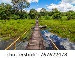 pantanal in brazil   Shutterstock . vector #767622478