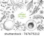 herbal tea shop frame vector... | Shutterstock .eps vector #767675212