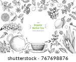 herbal tea shop frame vector...   Shutterstock .eps vector #767698876