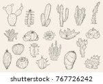 set of hand drawn different... | Shutterstock .eps vector #767726242
