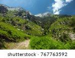 ipsarion mount. thassos island  ... | Shutterstock . vector #767763592