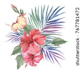 composition with hibiscus and... | Shutterstock . vector #767781472