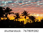 sunset golden hour with colored ... | Shutterstock . vector #767809282