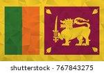 sri lanka flag   geometric... | Shutterstock .eps vector #767843275
