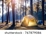 camping and tent under the pine ... | Shutterstock . vector #767879086