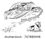 hand drawn black and white... | Shutterstock .eps vector #767880448