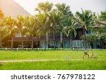 petchaburi  thailand   october... | Shutterstock . vector #767978122