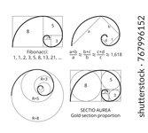 golden fibonacci ratio spirals. ...   Shutterstock .eps vector #767996152