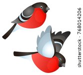 a set of sitting and flying the ... | Shutterstock .eps vector #768014206