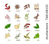 spices and seasonings outline... | Shutterstock .eps vector #768148132