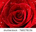 Stock photo close up of a red rose flower 768178156