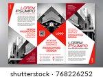 business brochure. flyer design.... | Shutterstock .eps vector #768226252