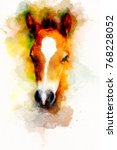 Cub Horse Face On Abstract...