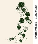 grape vine silhouette. vector... | Shutterstock .eps vector #76825030