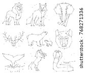 collection of hand draw animals ... | Shutterstock .eps vector #768271336