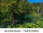 plitvice lakes national park ... | Shutterstock . vector #768315682