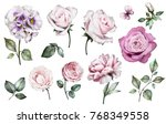 set watercolor elements of... | Shutterstock . vector #768349558