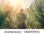 silhouette of a man on a... | Shutterstock . vector #768359542