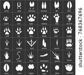 vector set of animal  avian and ... | Shutterstock .eps vector #768367696