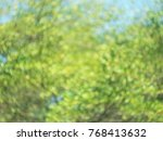 blur green leaves with spinning ... | Shutterstock . vector #768413632