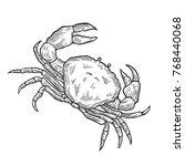 Hand Drawn Crab Seafood Nature...