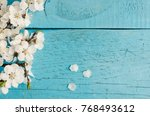 white spring cherry blossom on... | Shutterstock . vector #768493612