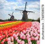 dutch wind mills | Shutterstock . vector #768508078
