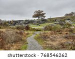 devil's den viewed from the... | Shutterstock . vector #768546262