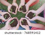 children hands holding sapling... | Shutterstock . vector #768591412