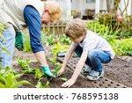 cute little preschool kid boy... | Shutterstock . vector #768595138