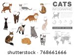 cat breeds infographic template ... | Shutterstock .eps vector #768661666