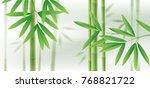 green bamboo horizontal... | Shutterstock .eps vector #768821722